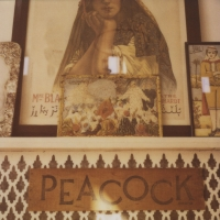 Peacock Pavilions, Morocco, Travel Photography, Briana Morrison, Polaroid Photography