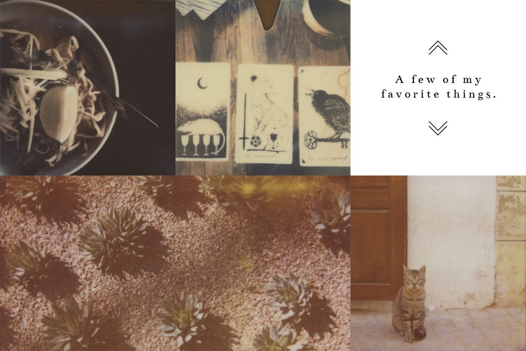 About The Artist - A few of my favorite things include tarot, food, succulents, cats, and Polaroids.