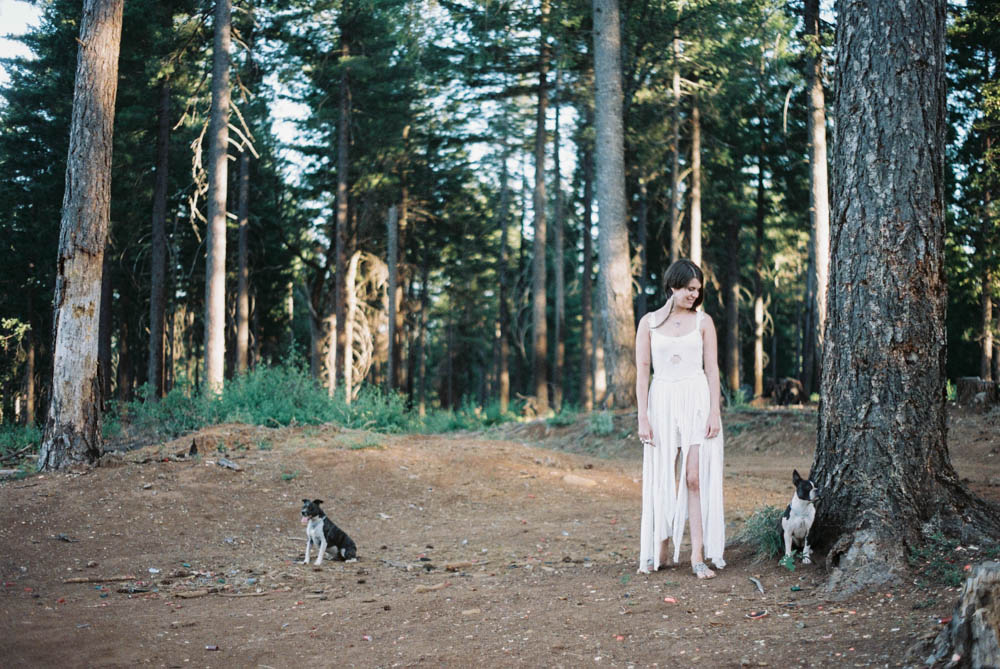 A woman in the woods with her two boston terriers - Portland Anniversary Photographer