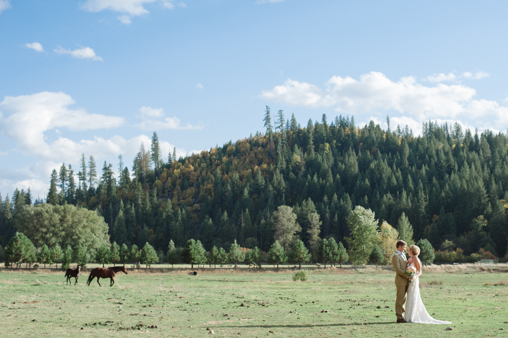 The bride and groom with a couple of horses. A mountain wedding in California by Graeagle Wedding Photographer Briana Morrison