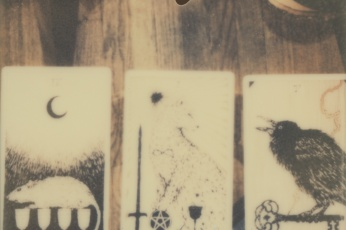 A polaroid photograph of The Wild Unknown tarot cards. Photographed by Briana Morrison