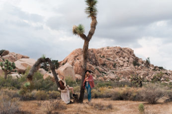 Musical duo, Bjorn and The Sun, pose next to a Joshua Tree in Southern California. Photographed by Joshua Tree wedding photographer, Briana Morrison