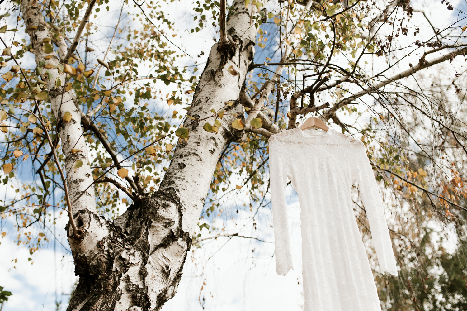 Bohemian white lace wedding dress hanging from a birch tree. By Chico Wedding Photographer Briana Morrison